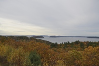 Fall foliage overlooking Frenchman Bay in Acadia National Park