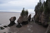 Hopewell Rocks as the 50+ feet tides are receeding