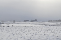 Treeless expanses of snow-covered corn-stubble punctuated by barns marks the Ottawa Country countryside