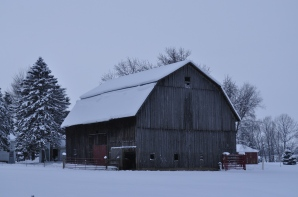 Working Barn with Horses