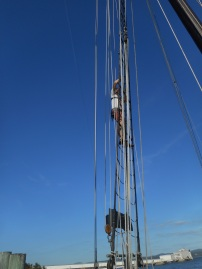 Working as crew aboard the 106-foot historic sailboat, the sloop Clearwater (September-December 2016)