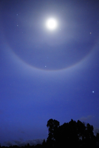 Waking up to a moon halo!