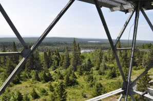 Up on the Mount Ojibway Fire Tower