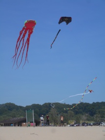 Kite Flying, Holland State Park
