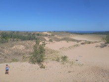 Sand dunes as far as the eye can see